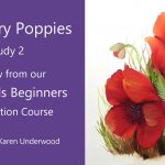Poppies – Preview