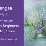 Hydrangea – Preview