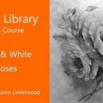 Black & White Roses – Preview