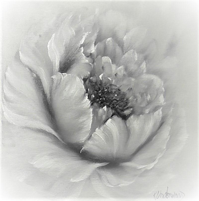 Large Monotone Rose (Black)