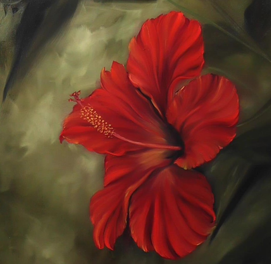 Ruby Red Hibiscus