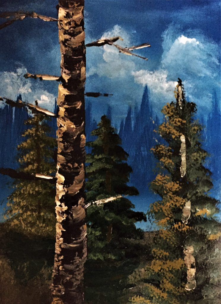 Study 3 – Pines